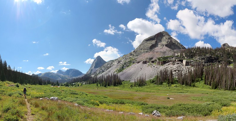 Big meadow on the Rock Creek Trail, with Buffalo Peak left of center