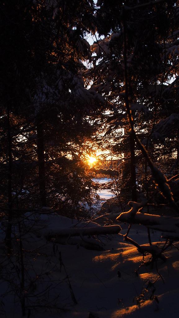 5.12. Auringonpaistetta risukasassa.