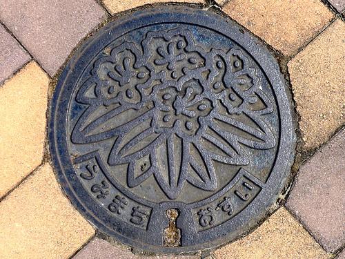 Umi Fukuoka, manhole cover 2 (福岡県宇美町のマンホール2)