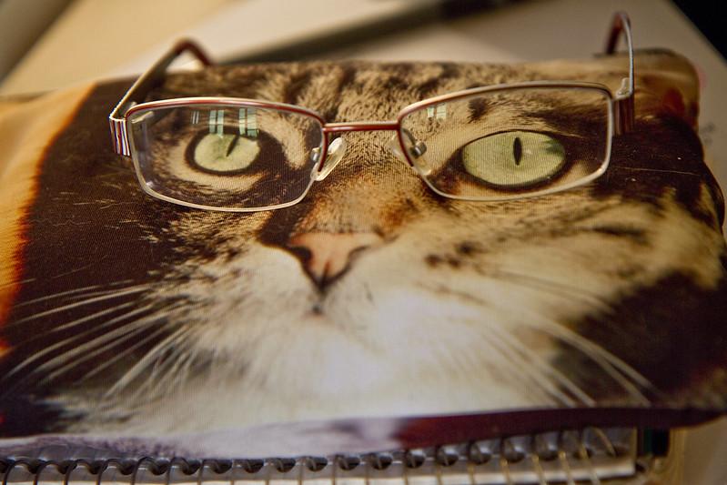 Skitty glasses
