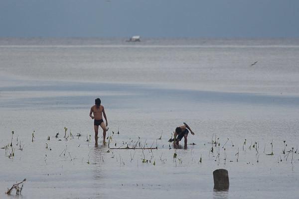 shellsfish gatherers