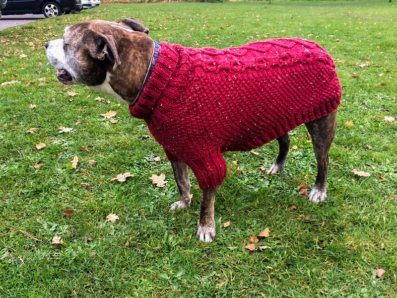 Jez shows off her new jumper