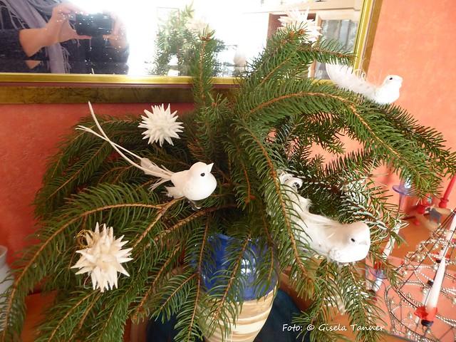 Weihnachten in Haus und Garten
