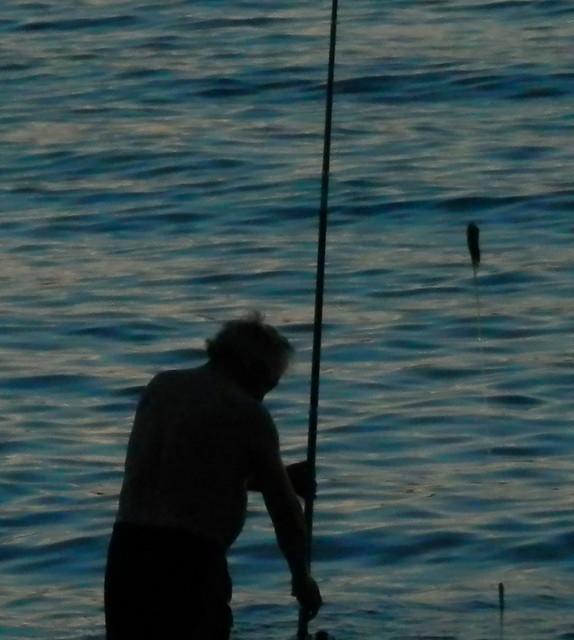 Viejo pescador copia