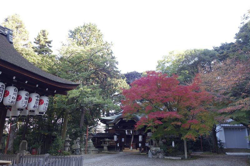 京都・粟田神社・紅葉