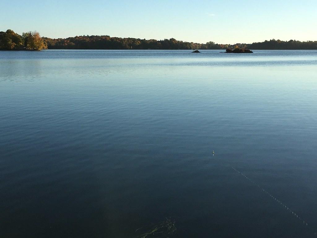 Fishing_91102016