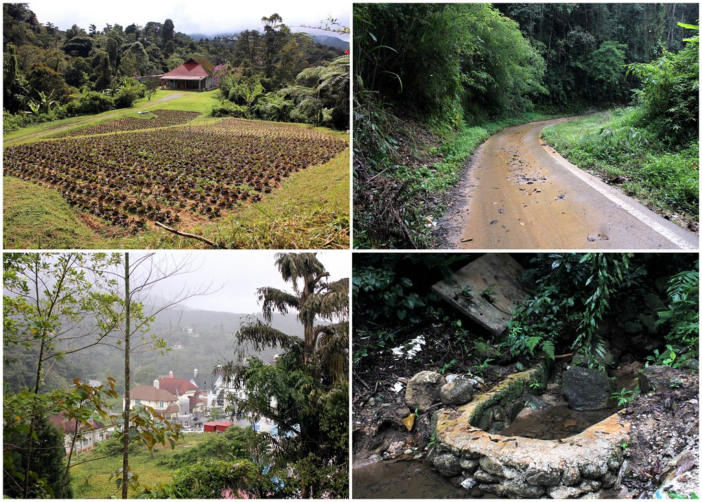 cameron-highlands-resort-jim-thompson-mystery-trail-route
