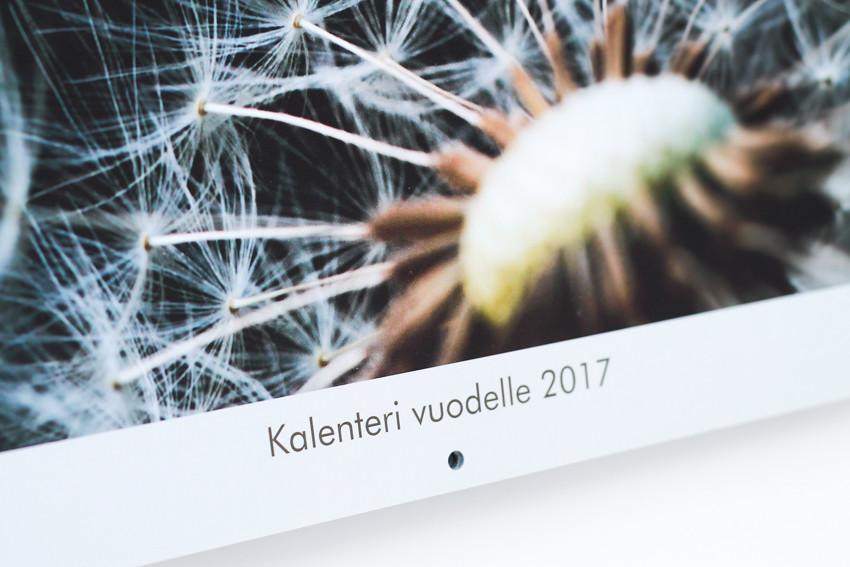 kalenteri omista kuvista-1697