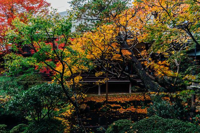Kyoto_Eikando_20