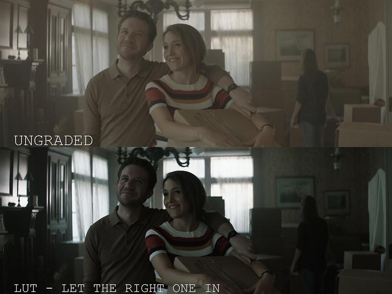 Horror LUTs - Couple