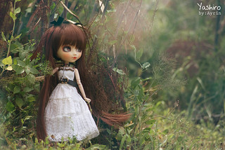 Lost in forest....[EXPLORE!] | by ^^Ayrin^^/ Dolly Boutique :)