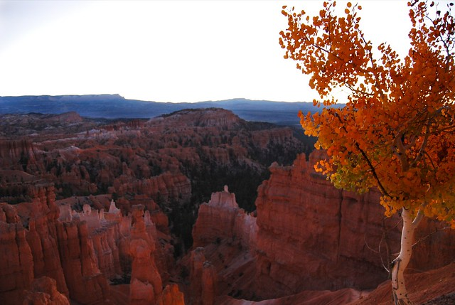 Fall Bryce Canyon NP