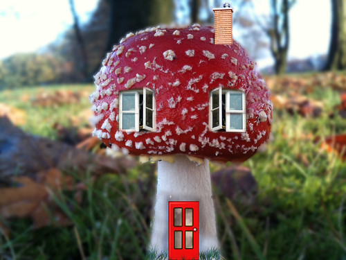 Fungi house | by DianneB 2007.
