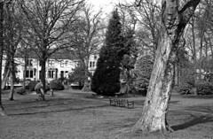 Victoria Park, Nelson
