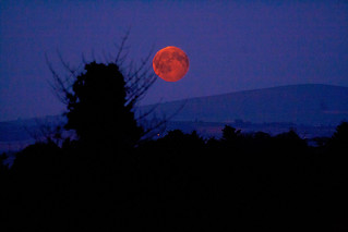 Harvest Moon Rising | by Donegal Skies