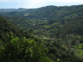 View from don Eduardo's Coffee Farm | by fabulousfabs