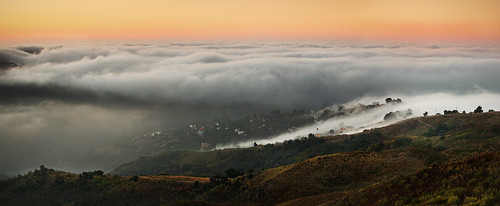 Augustus and the pacific Marine Layer, Malibu Ca | by ™ Pacheco