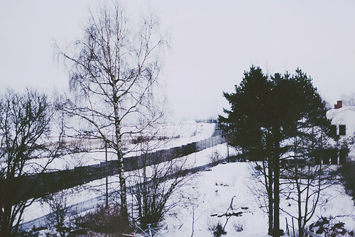 Winter | by Hanna Soreide