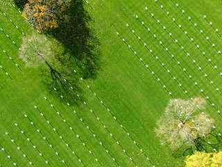Brittany American Cemetery - Cimetière de St James | by Olivier Guilmin