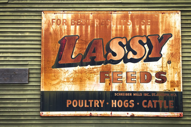 Lassy Feeds