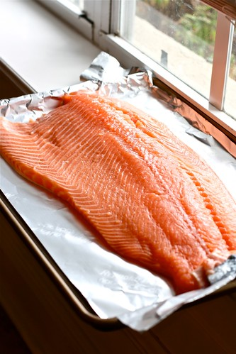 Norwegian Salmon | by Hungry Housewife