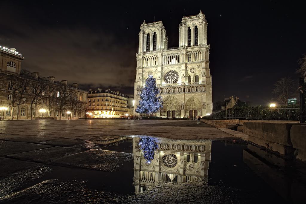Notre Dame [#114]