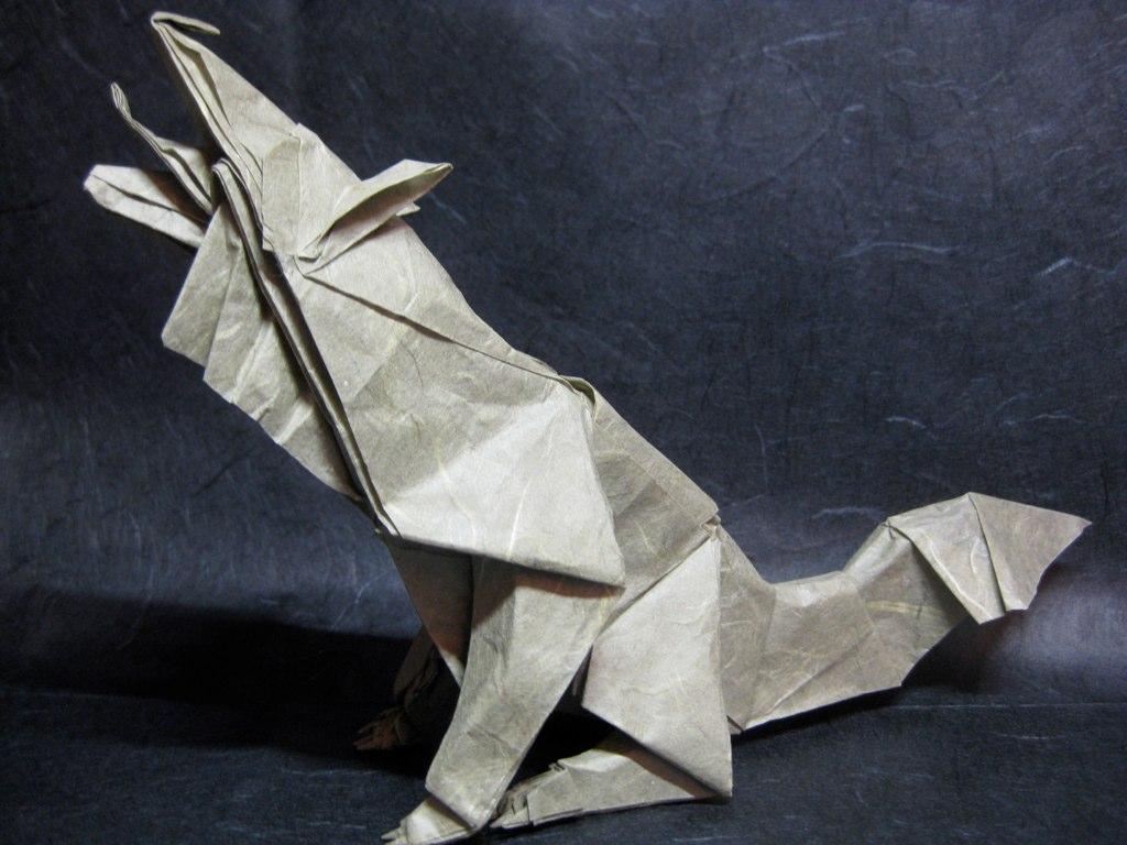 Grey Wolf By Quentin Trollip