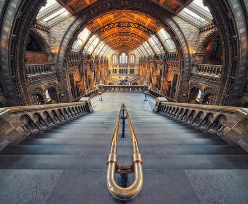 London - Natural History Museum | by Philipp Klinger Photography