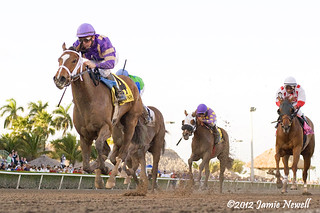 Sacristy wins the Grade III Old Hat | by creepy_coyote
