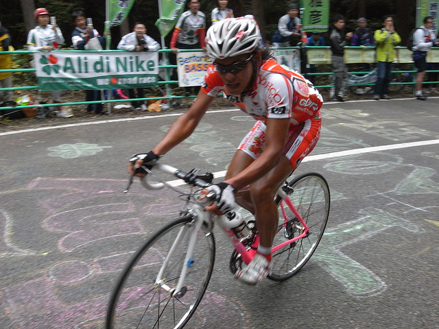 2008 JAPAN CUP CYCLE ROAD RACE