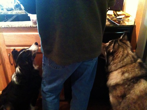 Lucy and Luka supervise the turkey carving | by kafski