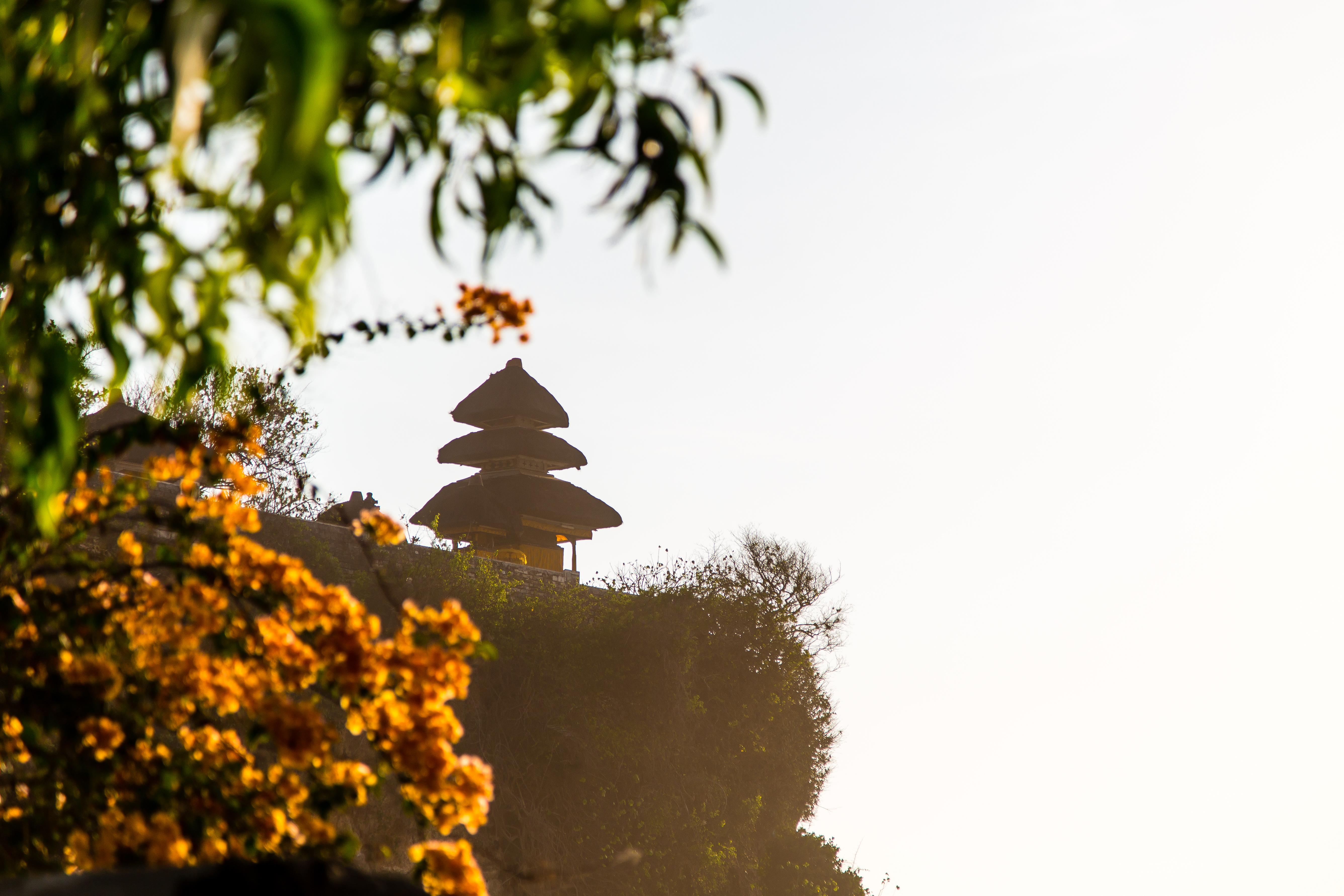 Bali-3859