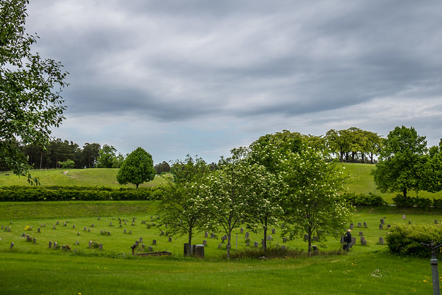 The Woodland Cemetery