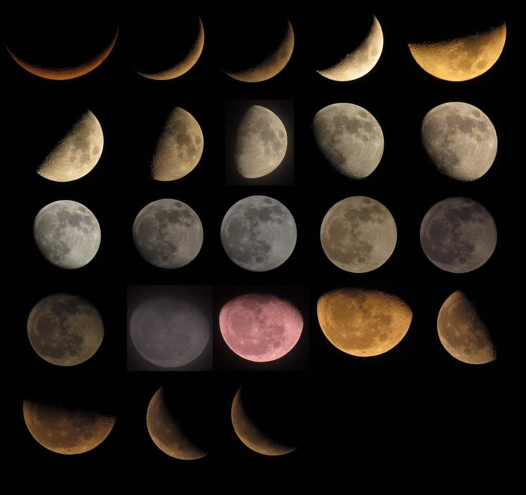 search results for moon phase blank worksheet calendar 2015. Black Bedroom Furniture Sets. Home Design Ideas