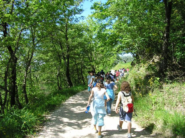 campo scuola nella natura tracce verdi