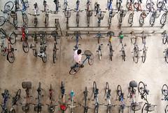 Bicycles by Kokkai Ng