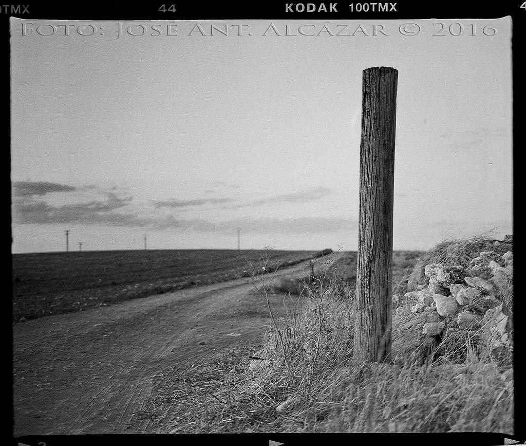 Fotografía química en blanco y negro de un poste en un camino