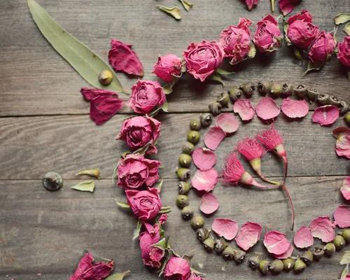 Rose Mandala Lupen Grainne