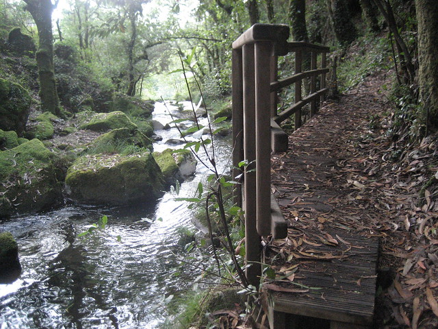 Pasarela en la Ruta dos ríos de Vilacoba e San Xusto