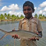 Boy with a milkfish in India. Photo by Arun Padiyar, 2011.