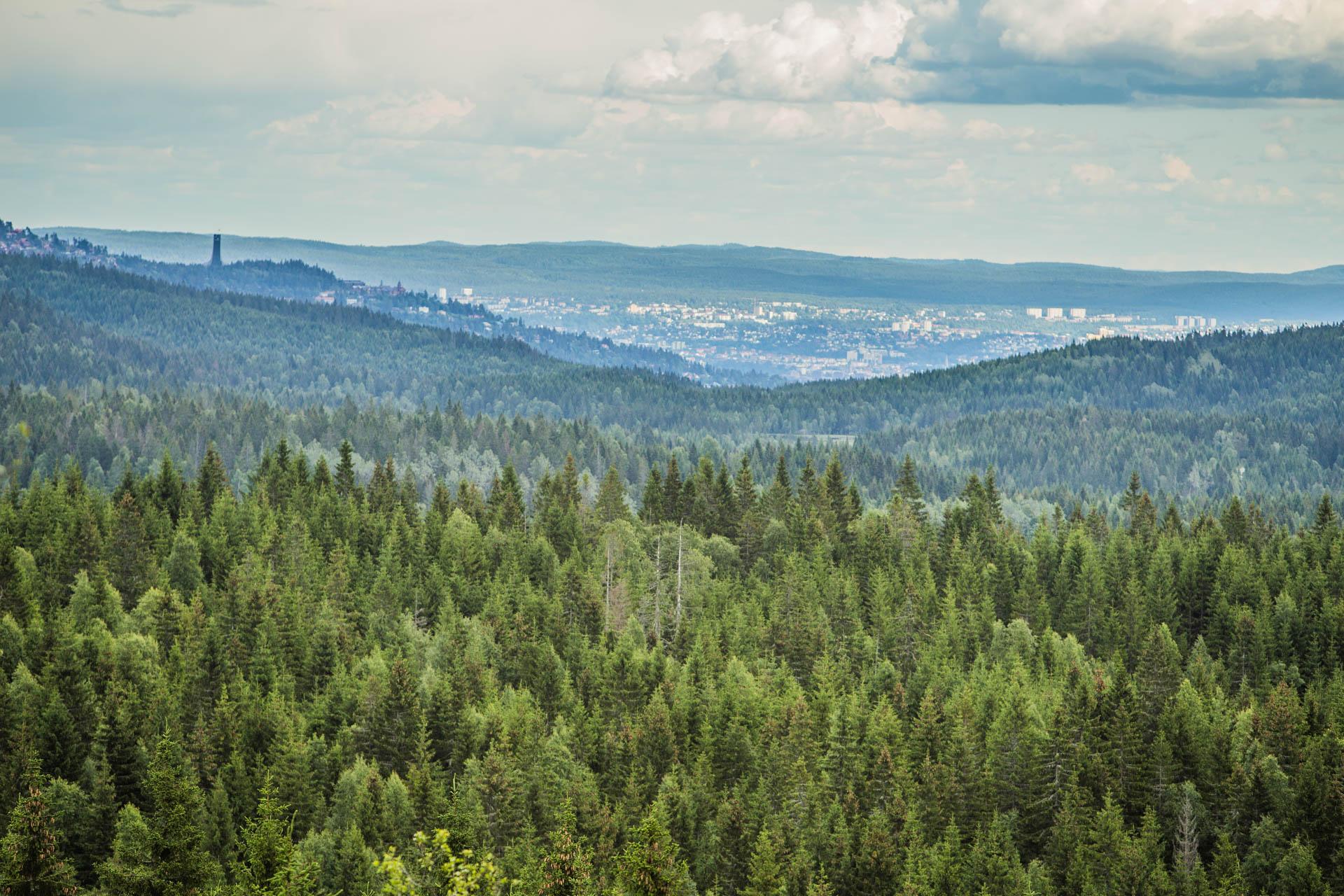 Oslo sett fra Vidvangshøgda