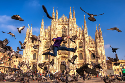 Dove Fighting at the Duomo di Milano | by Sprengben [why not get a friend]