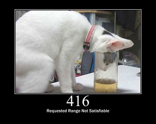 416 - Requested Range Not Satisfiable | by GirlieMac
