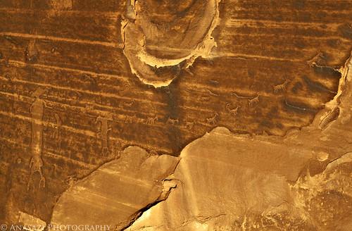 Moab's Ascending Sheep