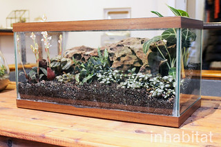 Terrarium Exhibit at Brooklyn Botanic Garden | by Inhabitat