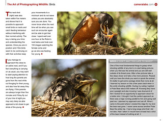 The Art of Photographing Wildlife book sample page 2 | by Cameralabs