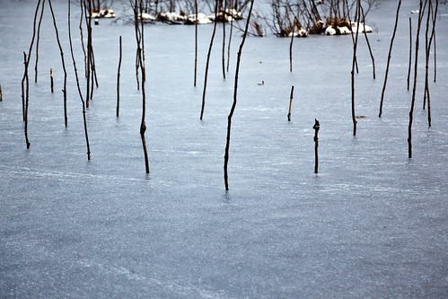 Art Omi in Winter - Ghent, NY - 2012, Jan - 07.jpg | by sebastien.barre