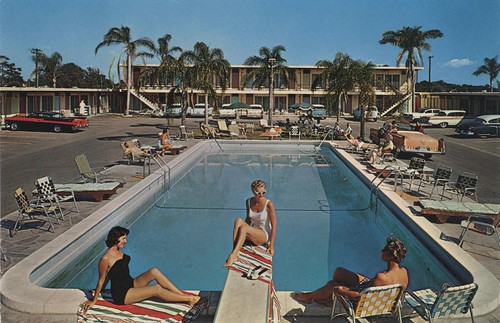 Plaza Inn Motel - St. Petersburg, Florida | by The Cardboard America Archives