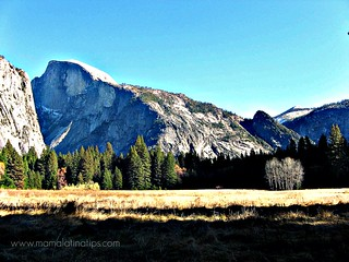 Half Dome | by Mamalatinatips