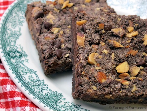 Easy Fudgy Chocolate Streusel Bar Cookies with Roasted and Salted Almonds 1 | by Farmgirl Susan